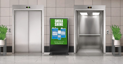 is-sheila-shine-a-disinfectant